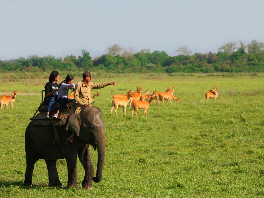 Besuch in Assam